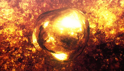 The Golden Egg from episode 8